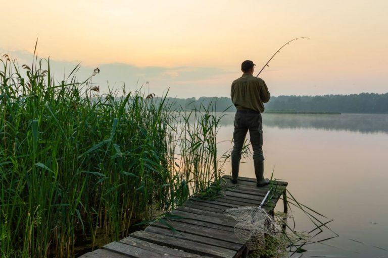 Sonhar com Pescaria