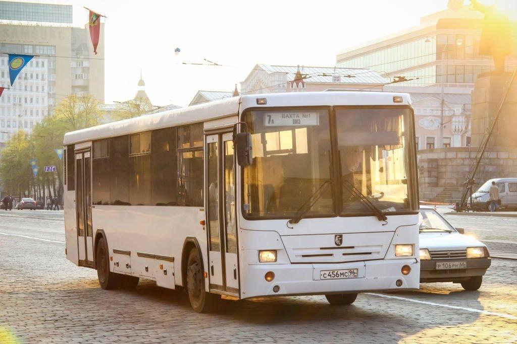 Bedeutung des Träumens von Bussen? 1